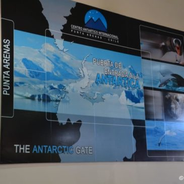 Punta Arenas – Patagonien