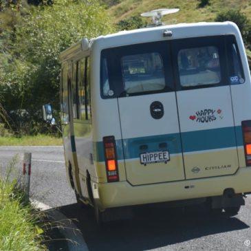 Coromandel bis Cape Reinga und zurück nach Auckland
