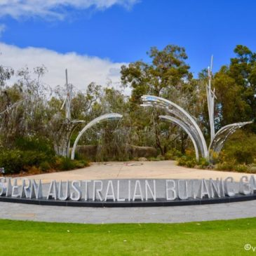Die Natur in und um Perth