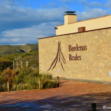 Halbwüste Bardenas Reales Spanien