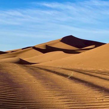 Vom Atlasgebirge in die Wüste